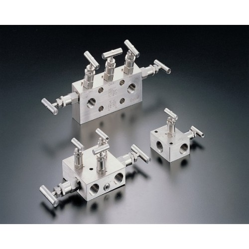 We have high quality instrument manifolds with single or